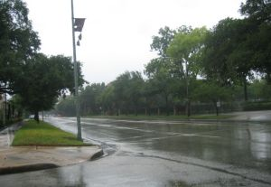 Montrose Blvd.--looks desolate,but there were some cars