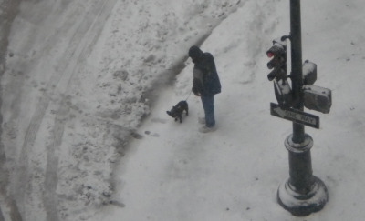 One of the many people walking dogs out in the snow.