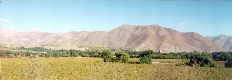 Valle de Elqui (The Elqui Valley)--if you look closely you can see the tops of some of the buildings of Vicuña.