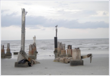 A pelican sits on a piling of a washed-away pier.