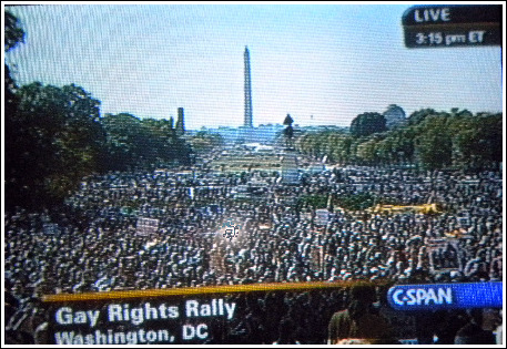 The crowds at the National Equality March in Washington, D.C.