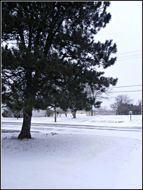Morning greetings of winter white out the door--Lyons, Kansas.